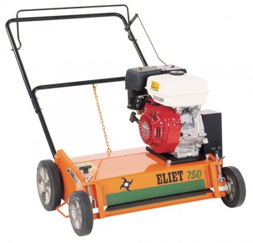 Now Is The Time To Scarify Your Lawn