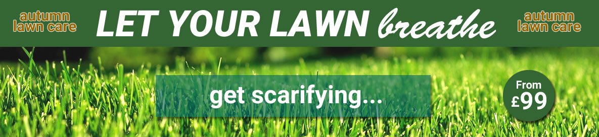 Scarifying - Let your lawn breathe